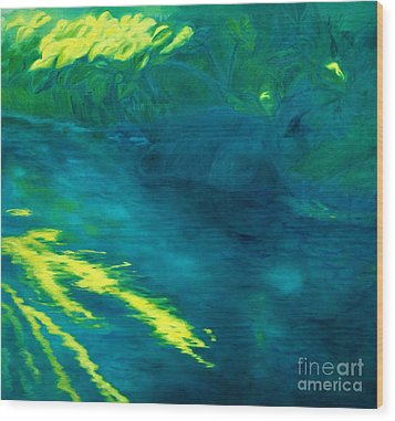 Blue Pool Off Ulaino Road Wood Print by Fay Biegun - Printscapes