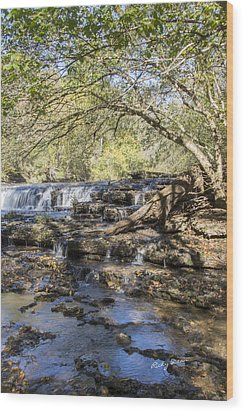 Blue Puddle Falls Wood Print