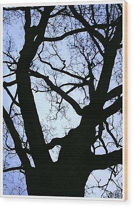 Blue Wood Print by Richard N Watkins