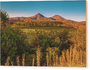 Wood Print featuring the photograph Blue Ridge Fall by Steven Ainsworth