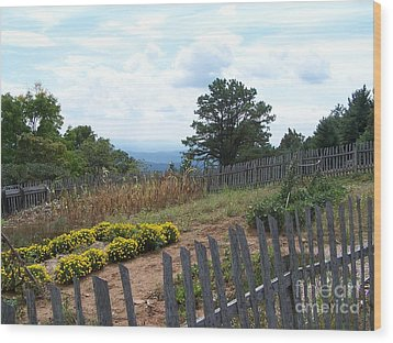 Blue Ridge Garden Wood Print by Randy Edwards