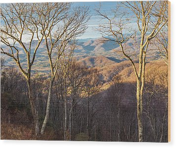 Wood Print featuring the photograph Blue Ridge Longshadows by Carl Amoth