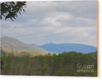 Wood Print featuring the painting Blue Ridge Mountain by Jan Daniels