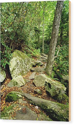 Wood Print featuring the photograph Blue Ridge Parkway Hiking Trail by Meta Gatschenberger
