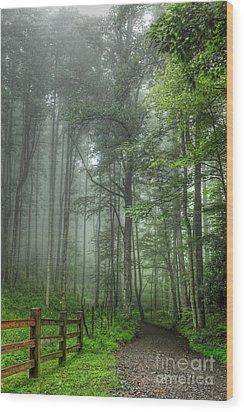 Blue Ridge - Trees In Fog Country Road I Wood Print