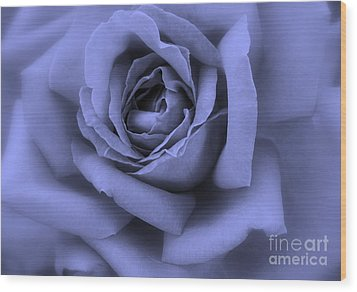 Blue Rose Abstract Wood Print by Carol Groenen