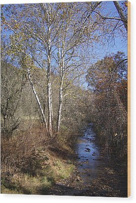Wood Print featuring the photograph Blue Skies by Leslie Manley