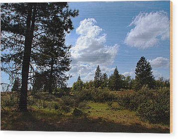 Wood Print featuring the photograph Blue Sky by Joanne Coyle