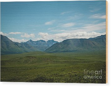 Blue Sky Mountians Wood Print