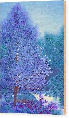 Blue Snow Scene Wood Print