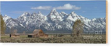 Blue Spring Skies Over Mormon Row Wood Print by Adam Jewell