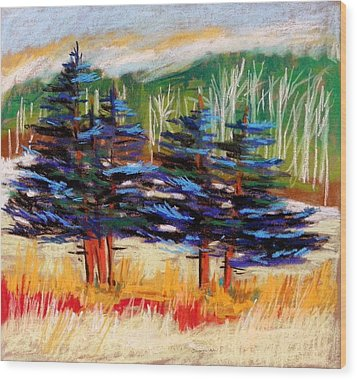Blue Spruce Stand Wood Print by John Williams