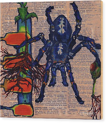 Blue Tarantula Wood Print by Emily McLaughlin