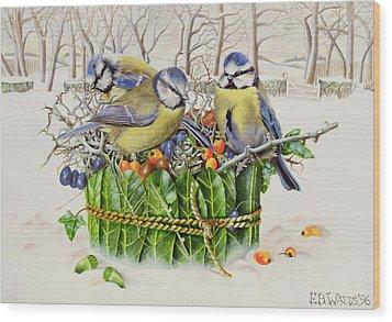 Blue Tits In Leaf Nest Wood Print by EB Watts
