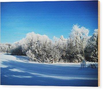 Blue Wood Print by Toni Jackson