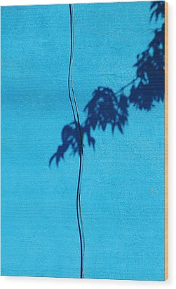 Wood Print featuring the photograph Blue Wall by JoAnn Lense