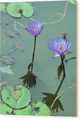 Blue Water Lilies Wood Print