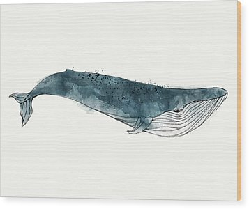 Blue Whale From Whales Chart Wood Print by Amy Hamilton