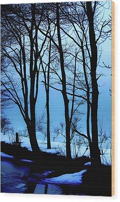 Blue Woods Wood Print by Karol Livote
