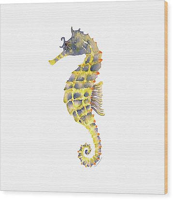 Blue Yellow Seahorse - Square Wood Print by Amy Kirkpatrick
