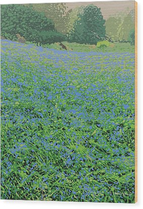 Bluebell Hill Wood Print by Malcolm Warrilow