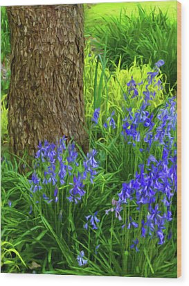 Wood Print featuring the photograph Bluebells Of Springtime  by Connie Handscomb