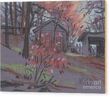 Blueberry Bush In Fall Wood Print by Donald Maier