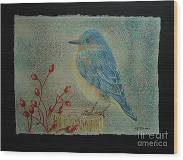 Bluebird Of Happiness Wood Print
