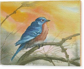 Bluebird Wood Print by Sean Seal