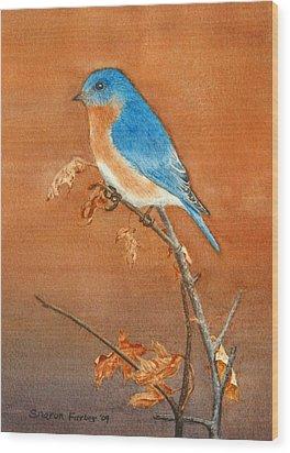 Bluebird Wood Print by Sharon Farber