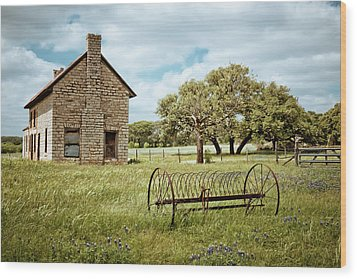 Wood Print featuring the photograph Bluebonnet Dreams by Linda Unger