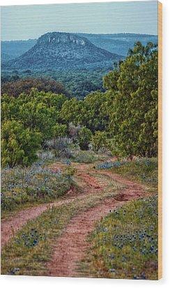 Bluebonnet Road Wood Print