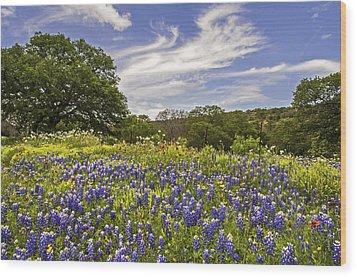 Bluebonnet Spring Wood Print