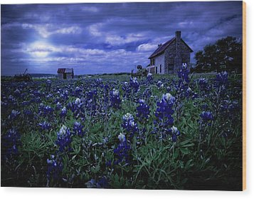 Wood Print featuring the photograph Bluebonnets In The Blue Hour by Linda Unger