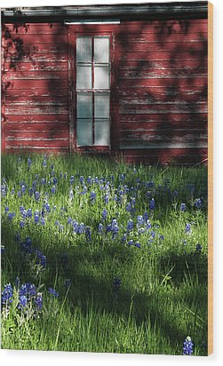 Wood Print featuring the photograph Bluebonnets In The Shade by David and Carol Kelly