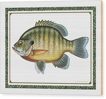 Bluegill Print Wood Print by JQ Licensing