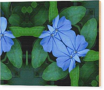Bluegreencomp 2006 Wood Print