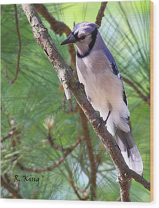 Wood Print featuring the photograph Bluejay by Roena King