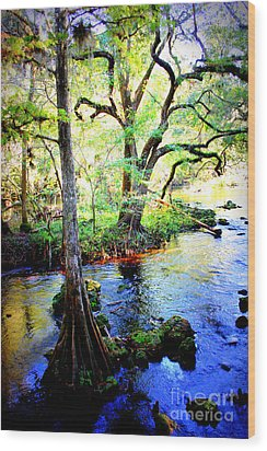 Blues In Florida Swamp Wood Print by Carol Groenen