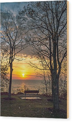 Bluff Bench Wood Print by James  Meyer