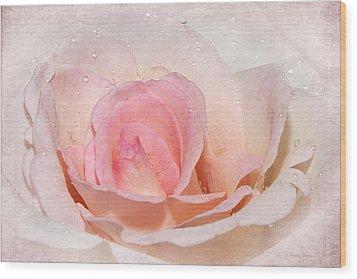 Blush Pink Dewy Rose Wood Print