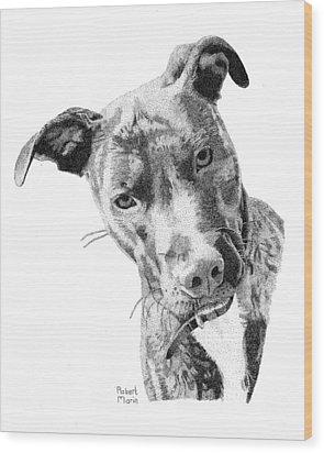 Bo Wood Print