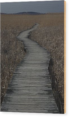 Boardwalk Wood Print by Eric Workman