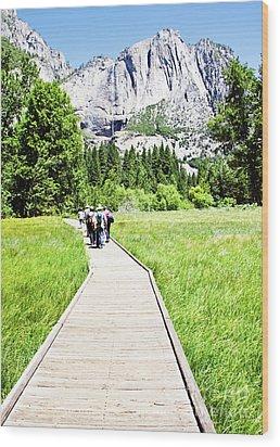 Boardwalk On Yosemite Meadow Wood Print