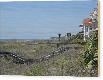 Wood Print featuring the photograph Boardwalks And Sand Dunes by Carol  Bradley