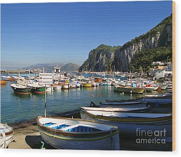 Boats In The Harbor Wood Print
