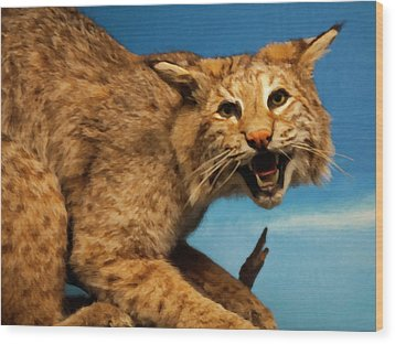 Bobcat On A Branch Wood Print by Chris Flees