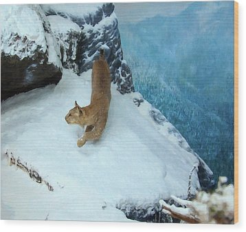 Wood Print featuring the digital art Bobcat On A Mountain Ledge by Chris Flees