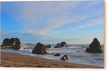 Bodega Bay Sunset Wood Print by Brad Scott