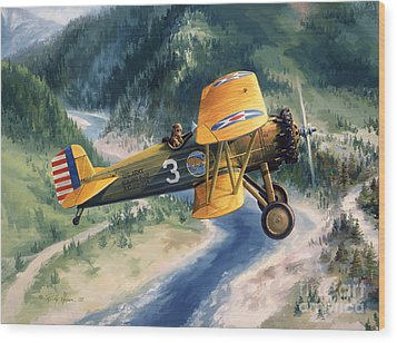 Boeing Country Wood Print by Randy Green